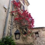 More floral colour St paul du Vence