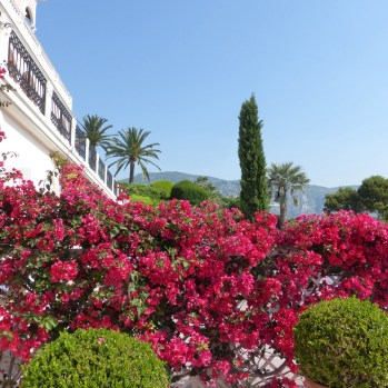Colour at the entrance to Villa Ephrussi de Rothschild