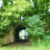 A crumbling old tunnel under a road crossing over fields