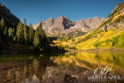 Maroon Bells Gold | Sheri Frazier Photography
