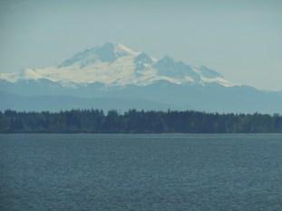 Mt. Baker across the Bay