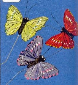 verenvlinder