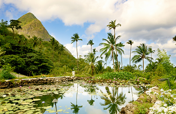 Sugar Beach in St. Lucia