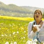 Alergjite – Barna Popullore Per Alergji Dhe Parandalimi I Tyre