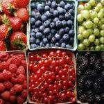 Top 15 Ushqime Per Njerez Me Semundje Te Veshkave
