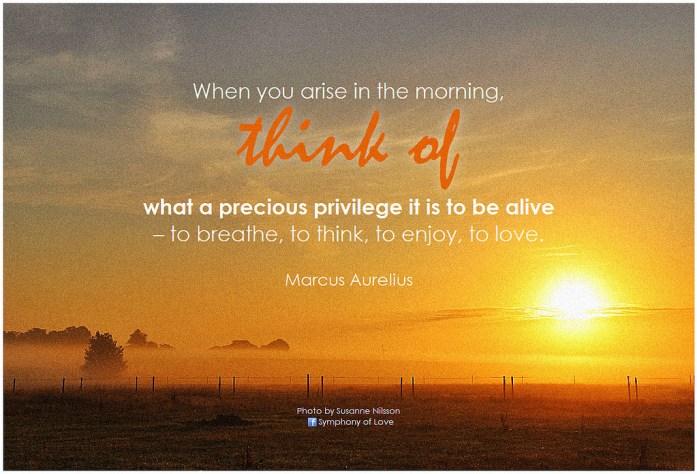 Marcus Aurelius on gratitude