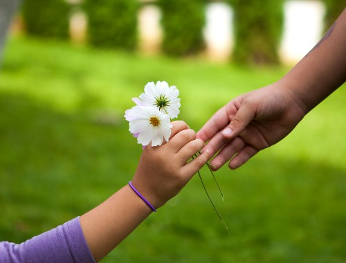 kindness, giving, gifts, hands, flowers