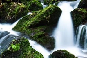 creek-21749__480