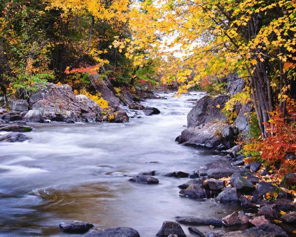 A river runs through it...
