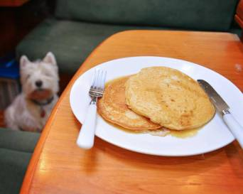 Pancakes for brekkies