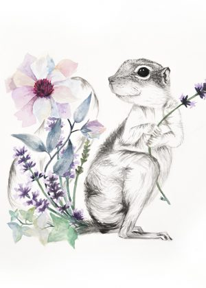 The Clever Squirrel - From $62