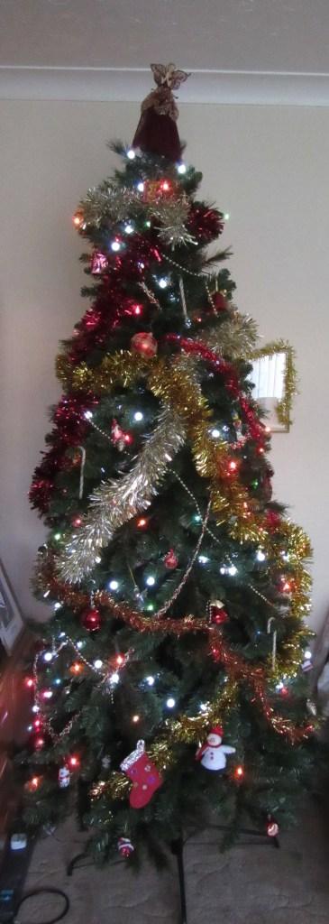 Merry Christmas | Shersca Genealogy
