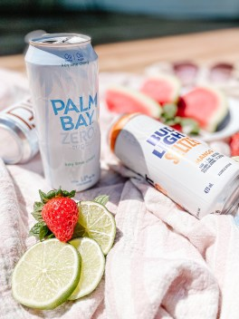Low-Calorie 2021 Summer Alcoholic Drink Review: The best low-sugar alcoholic coolers available in stores now at the LCBO. Palm Bay Zero Key Lime Cherry and Bud Light Mango Seltzer