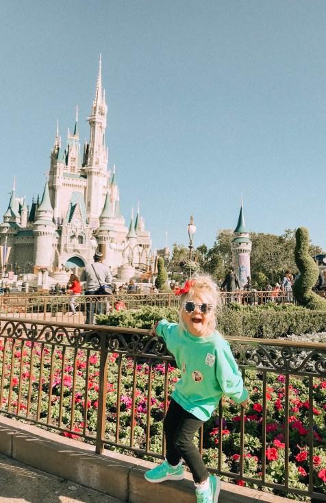 You love Disney World!
