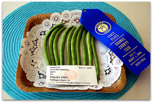 Green Beans 1st Prize
