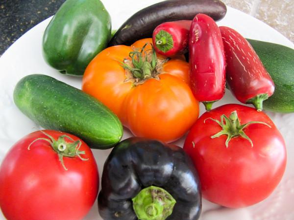 Ad Hoc Summer Vegetable Gratin