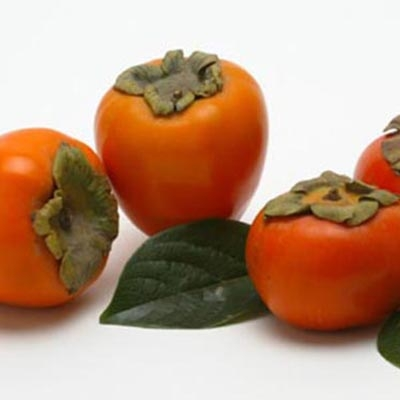 Persimmons, ShesCookin