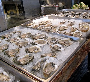 Oysters 101