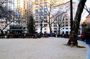 Shake Shack at Madison Park