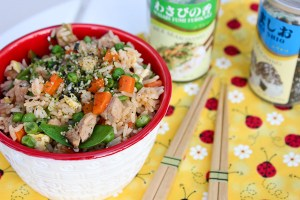 pork fried rice, vegetable fried rice, fried rice recipe