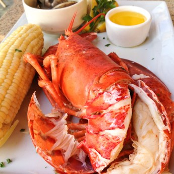 Lobsterfest 2015 at Newport Dunes