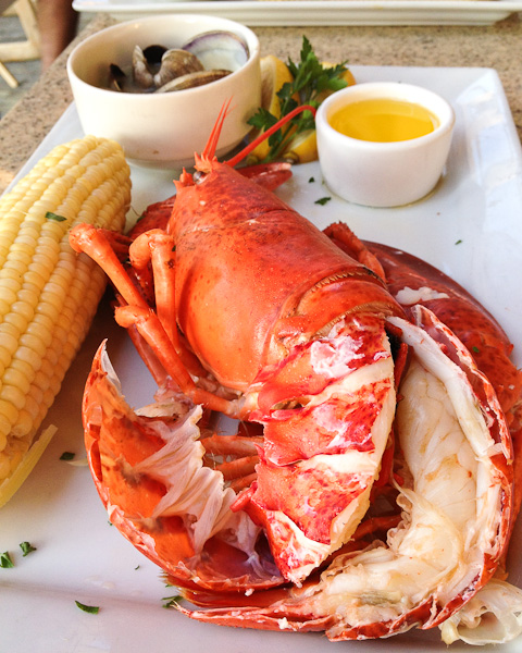 Bluewater Grill New England Lobster-6344
