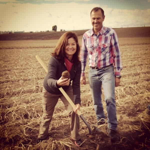 Digging potatoes. Priscilla Willis, Lynn Wilcox