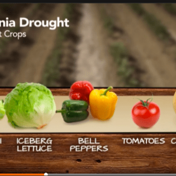 California's Drought Affects All of Us