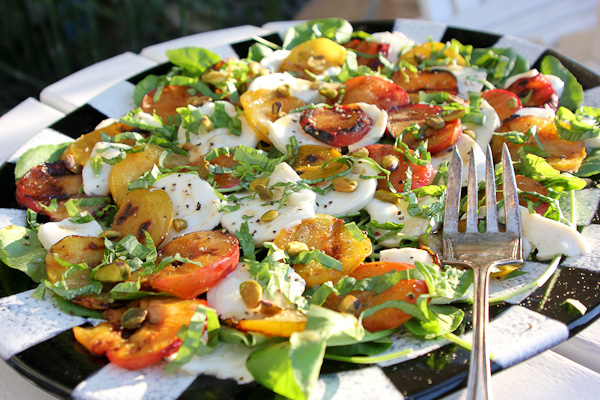 Grilled Plum and fresh Mozzarella Salad