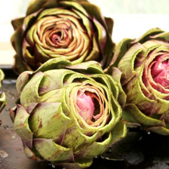 Artichoke How To's and Easy Slow Cooker Artichokes