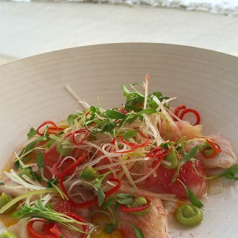 hamachi crudo/grapefruit, avocado mousse, chili and cilantro