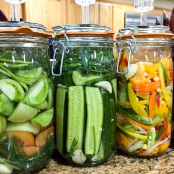 Homemade Kimchi – Learning About Fermented Foods