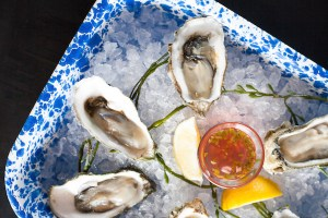 Fresh Oysters on the Half Shell - Ways & Means | ShesCookin.com