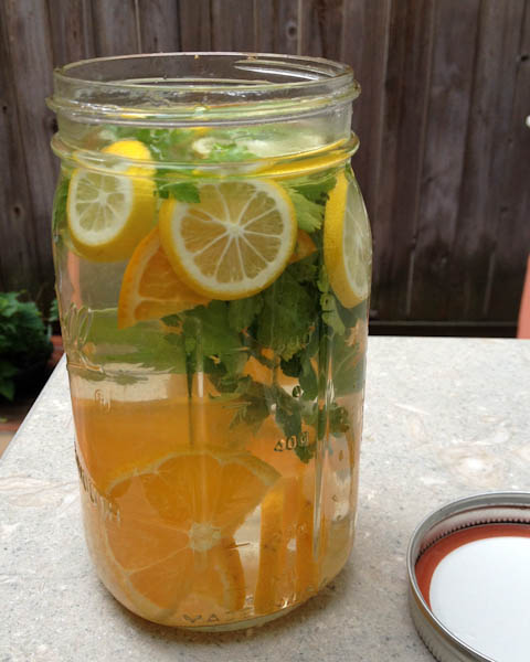 Detox water - citrus, ginger, parsley | ShesCookin.com