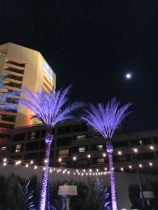Hotel Irvine Backyard Movie Nights | ShesCookin.com-