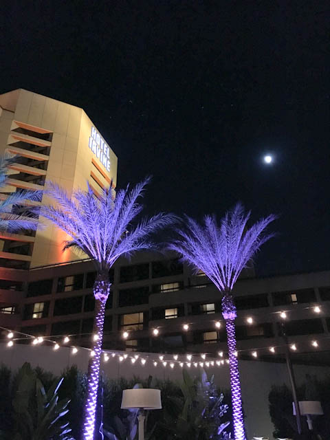 Hotel Irvine Backyard Movie Nights | ShesCookin.com-