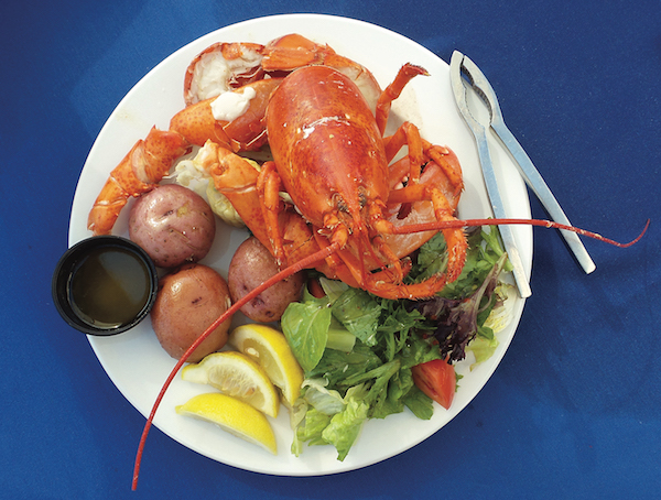 Maine Lobster at Lobsterfest | ShesCookin.com