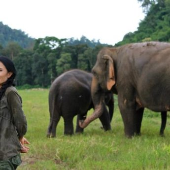 Chef Pascal Olhats' The Gray Event to Help Save Thai Elephants