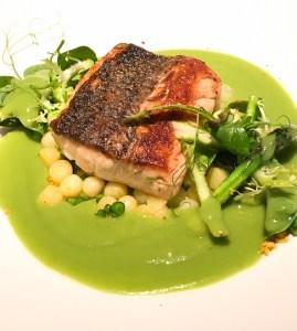 Pan Seared Sea Bass |english peas, vichyssoise, espelette pepper, meyer lemon