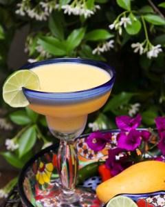 Mango Pineapple Margarita   ShesCookin.com-