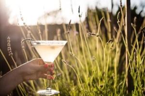 Pear-adise Martini, Provenance | ShesCookin.com