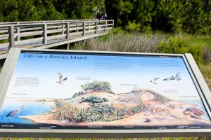 Cape Lookout National Seashore, North Carolina
