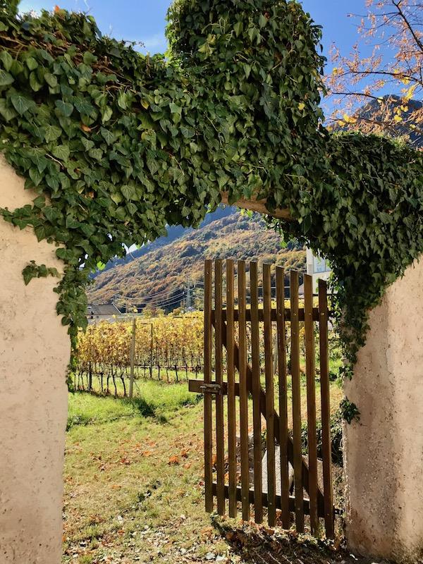 Lake Kaltern-Italy   Suditrol - Alto Adige wine region