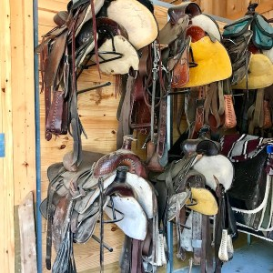 Saddles in the stable at Dogwood Canyon Nature Park