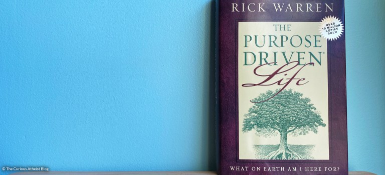 The Purpose-Driven Life: Life is God's Game