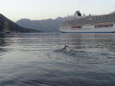 Evening swim, Kotor