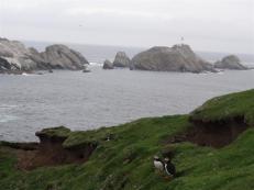 Muckle Flugga, Unst, Shetland