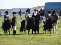 Small children on small ponies, Voe show, Shetland