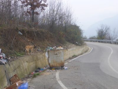Dogs and litter. Welcome to Albania.