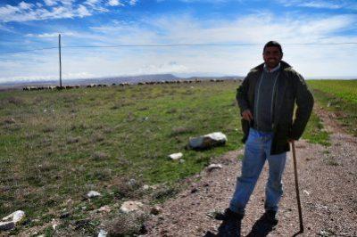 Shepherd near Aksaray